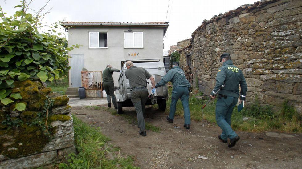 Los agentes de Medio Ambiente y el Seprona acercan el remolque al perro antes de capturarlo