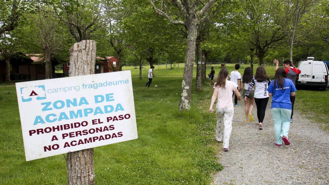 Festa do Galo Piñeiro en O Pino.El plan incluye mejoras en el IES Auis Celenis de Caldas de Reis