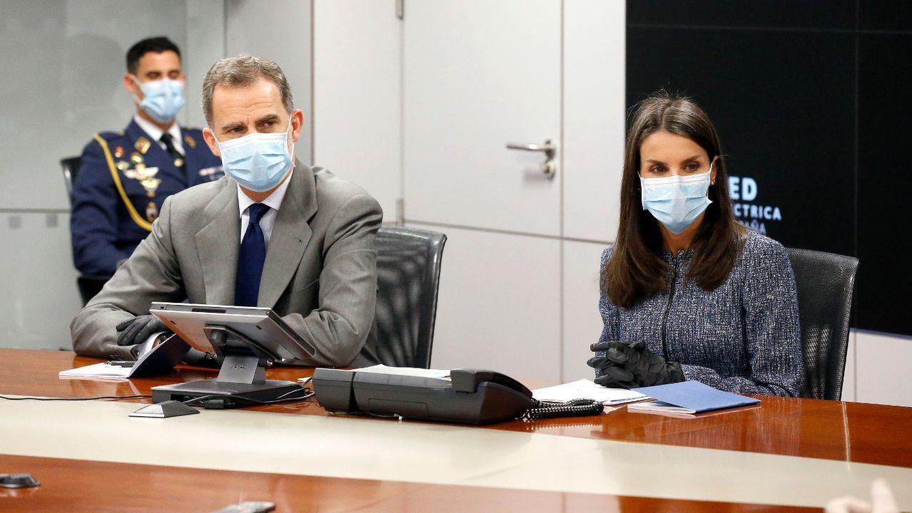 Los reyes han celebrado varias videoconferencias durante el confinamiento por la pandemia del coronavirus
