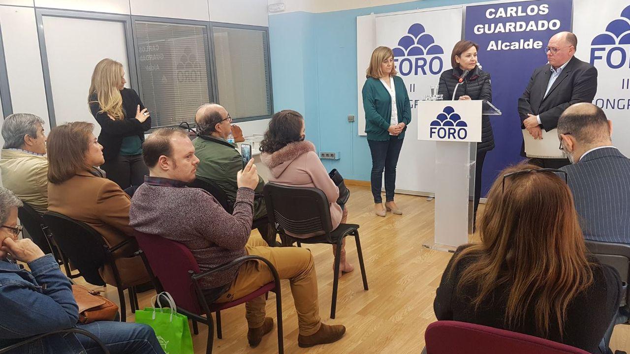 Una visión panorámica de la cultura asturiana de la sidra.Carmen Moriyón interviene durante el segundo congreso local del partido en Avilés