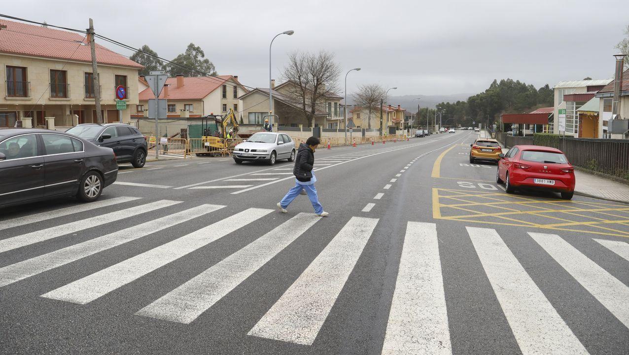 Imágenes que dejó el Xoves de Compadres en la comarca de Lemos.Escolares colaborando en traballos de mantemento ao pé do Camiño de Santiago