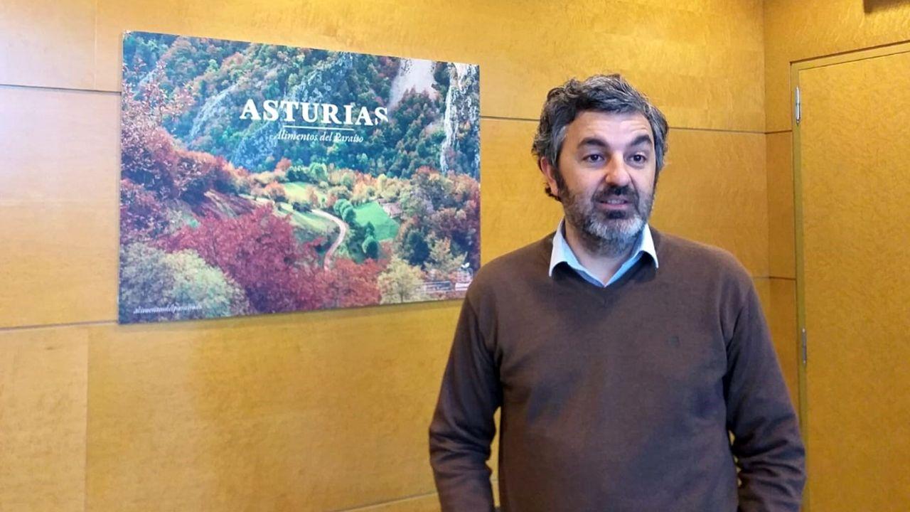 Alejandro Calvo