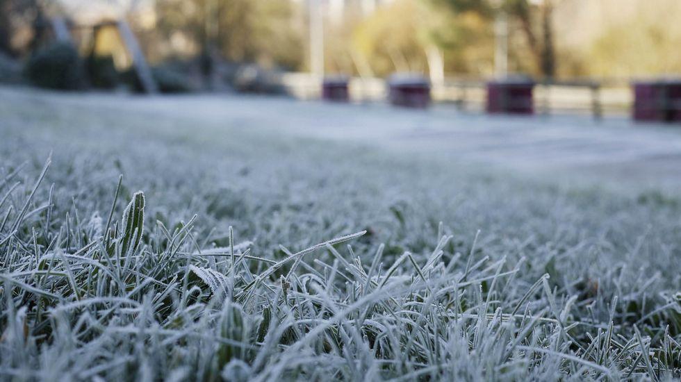 Ábedes.La helada también se dejó notar en el parque de Portovello en Ourense