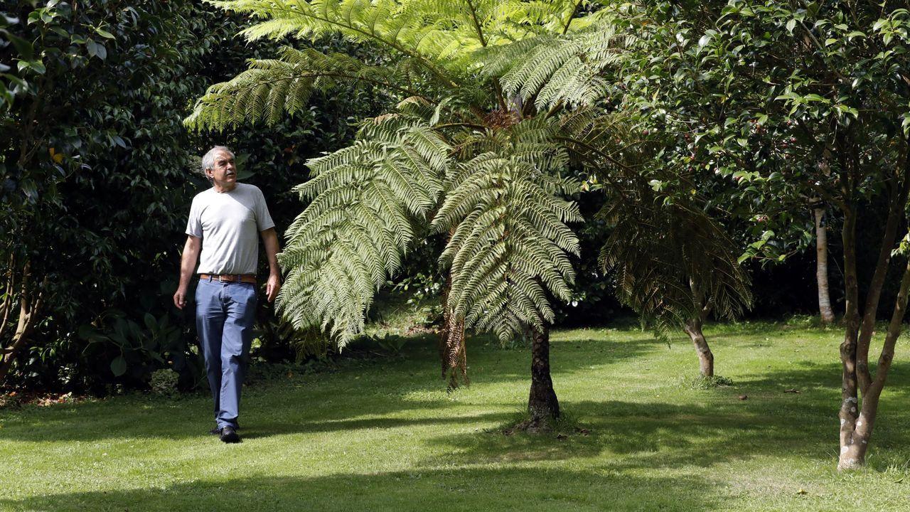 Imaxe de arquivo de Caxigueiro paseando por Espazo Caritel en Foz, o seu xardín botánico e artístico