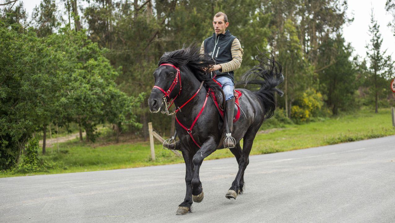Adrián Martínez, a lomos de su caballo Macareno, de pura raza gallega
