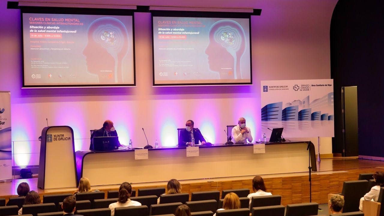 El conselleiro de Sanidade participando este miércoles en unas jornadas sobre salud mental en Vigo