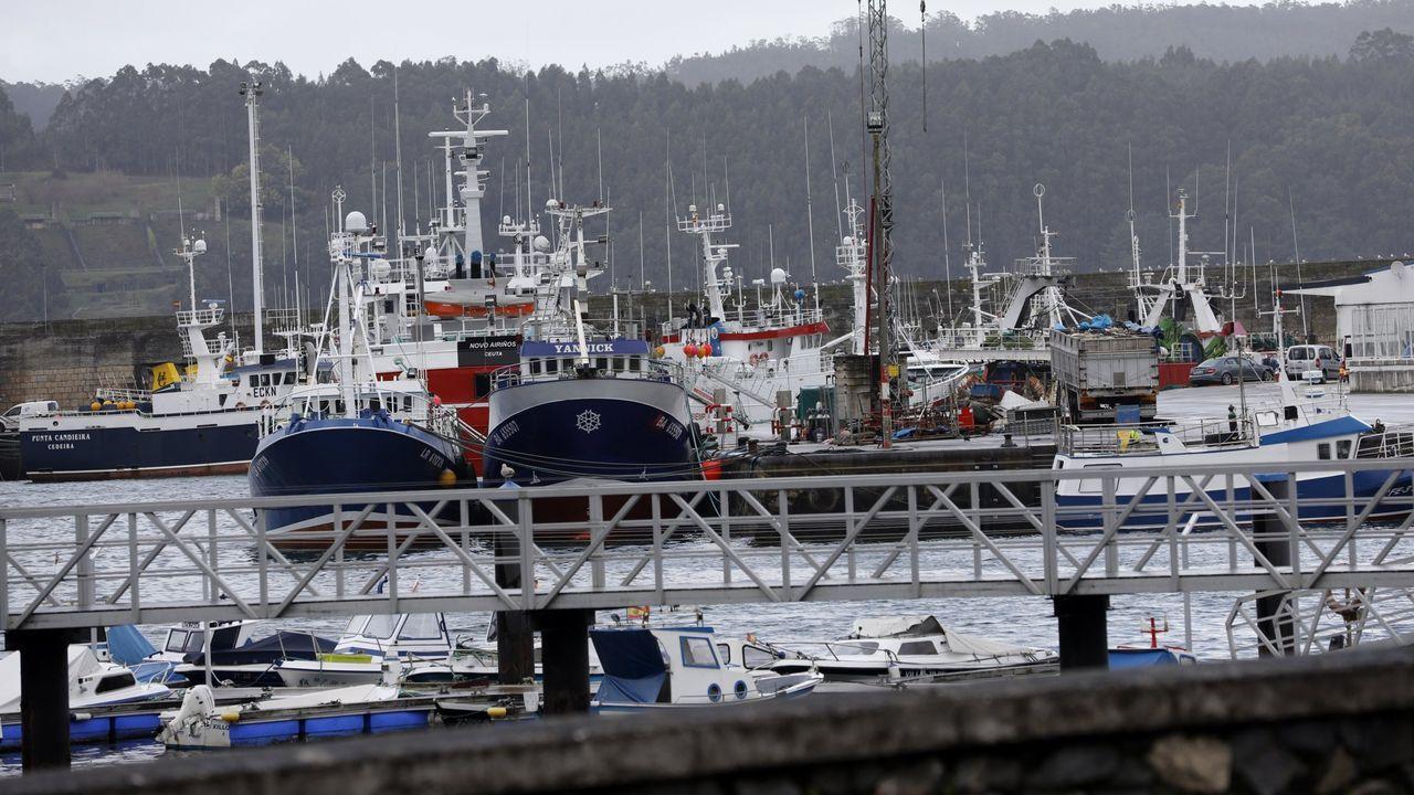 La pandemia afectó a todos los eslabones de la pesca, pero la mayoría resistieron para suministrar alimentos, como los del puerto de Celeiro, en una foto de archivo