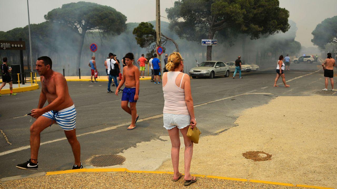 Llamas en los alrededores de Mazagón, Huelva