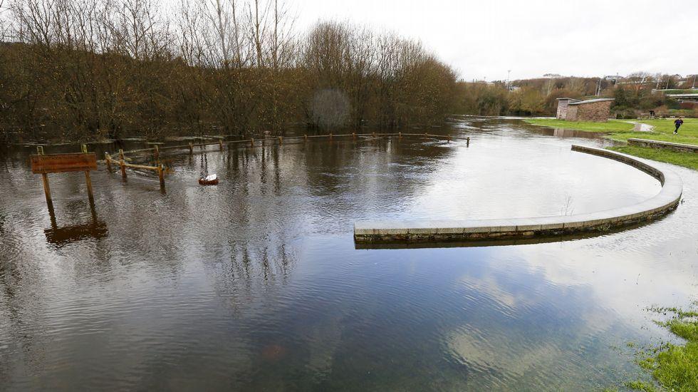 Las consecuencias del temporal que azota Galicia este sábado.A Limia es una zona especial de protección de aves.