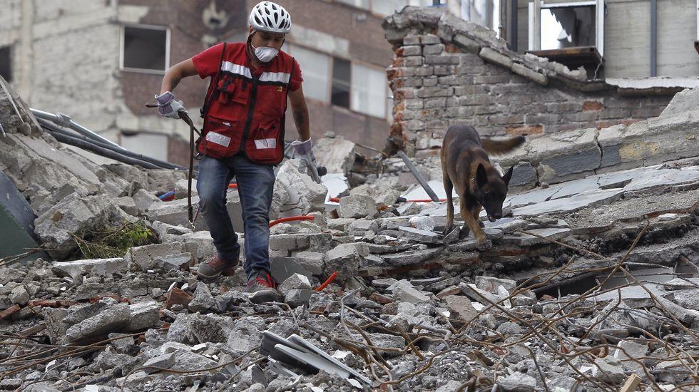 Efectivos de la UME se desplazan a México para colaborar en las tareas de rescate.Bandera de Corea del Norte