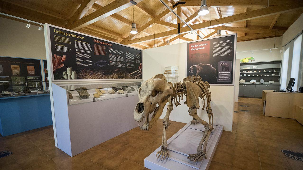 Visita en imágenes a un museo único en Galicia.Reproducción de un neandertal del Museo de Düsseldorf