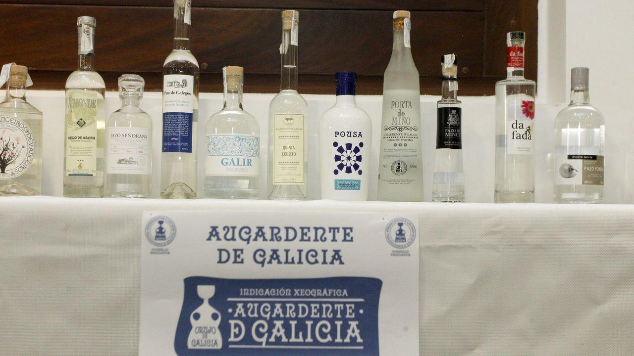 Último alijo de cocaína incautado por Vigilancia Aduanera en Galicia
