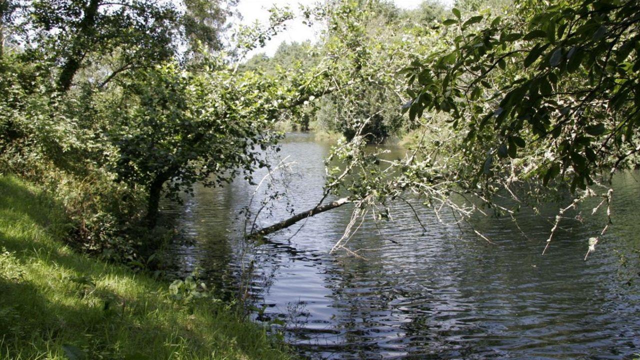 Vista del río Lambre en Paderne. Imagen de archivo