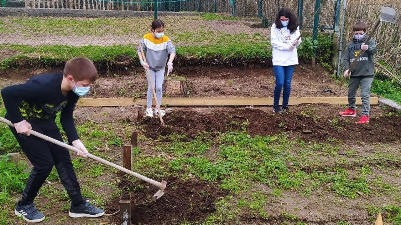 Voz Natura en el colegio Torre-Cela de Bueu.Alumnos del CEIP Santa Rita de Galdo de  peregrinos  del Camiño do Mar, en su proyecto Voz Natura