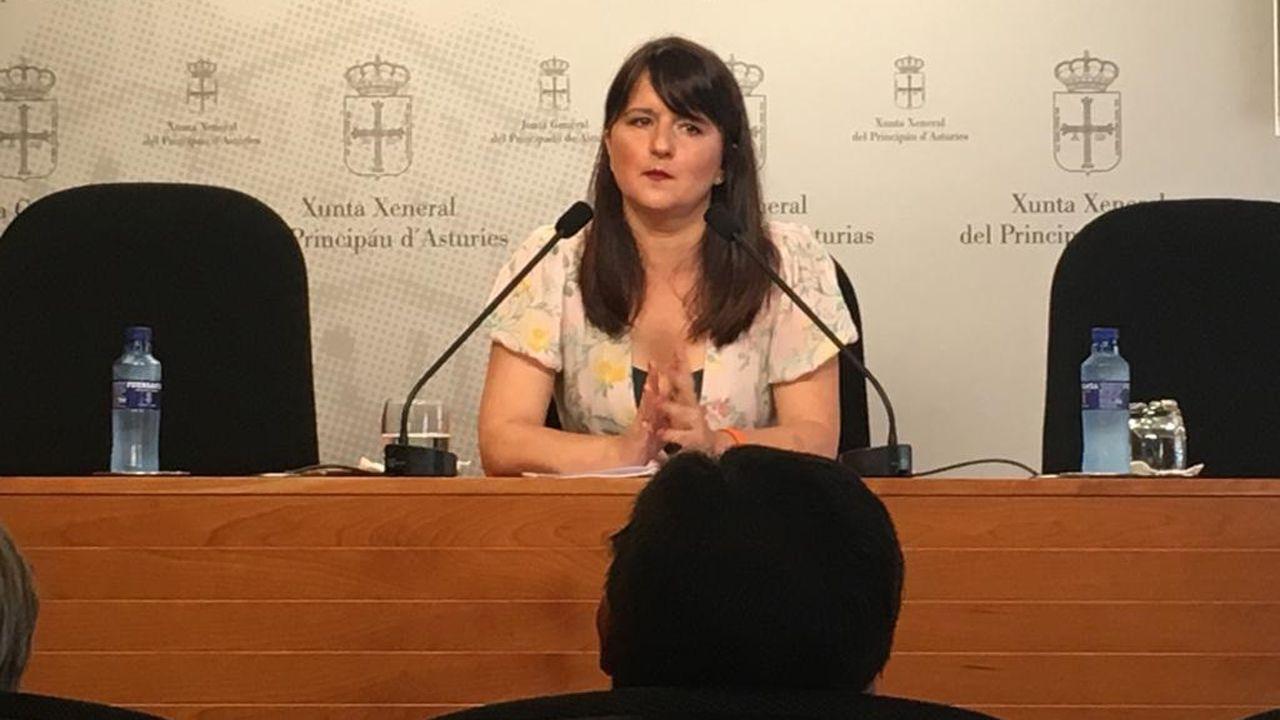 La portavoz de Ciudadanos en la Junta General, Laura Pérez Macho