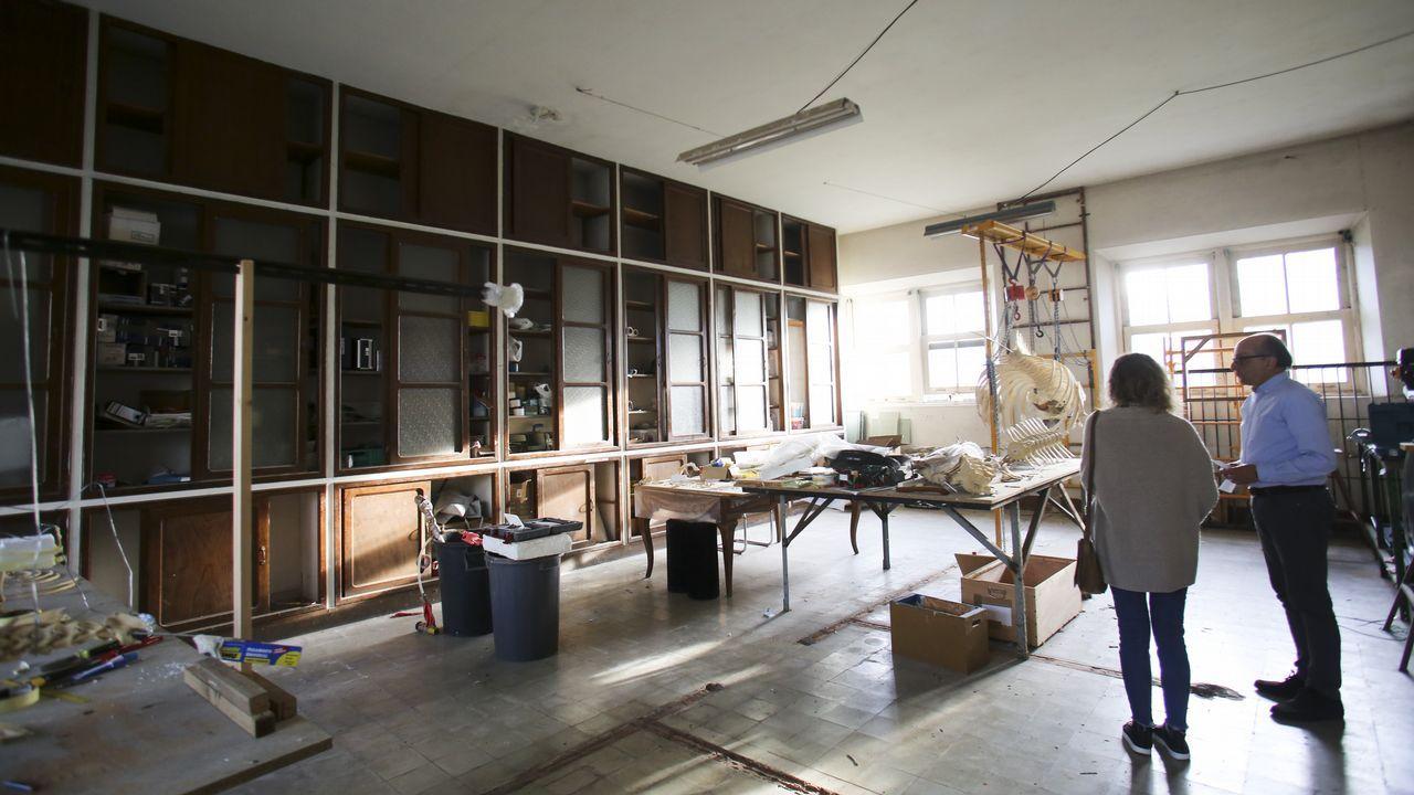 La directiva de la SGHN tiene previsto ampliar el Museo da Natureza con una nueva sala de exposiciones, para lo cual reformará una estancia sin reformar que ahora se utiliza como taller