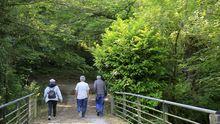 Ruta de senderismo a orillas del río Sarria