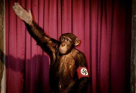 <span lang= es-es >Antecedente</span>. Rudolph Herzog, autor del libro, rodó en el 2006 el documental «Heil, Hitler, el cerdo está muerto», en el que el dictador alemán ya era objeto de burla en escenas como esta.