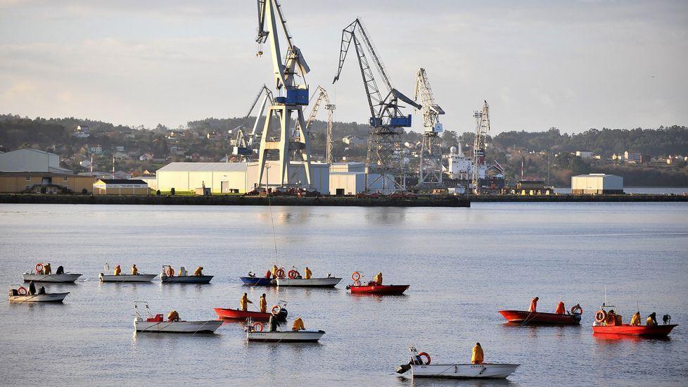 Mariscadores faenando a flote en As Pías