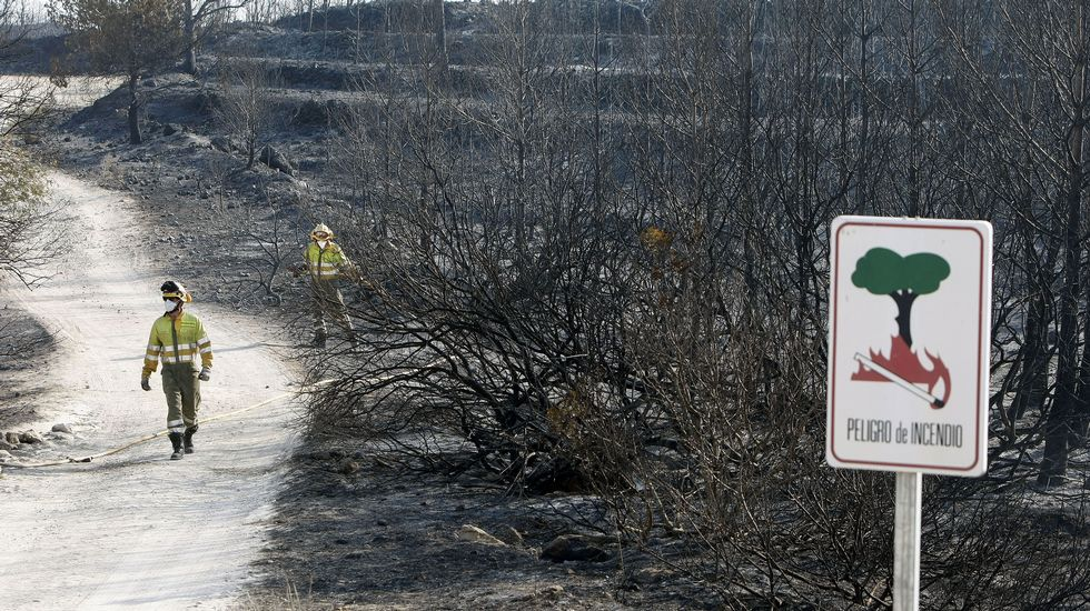 Lucha desesperada contra el fuego en Alicante
