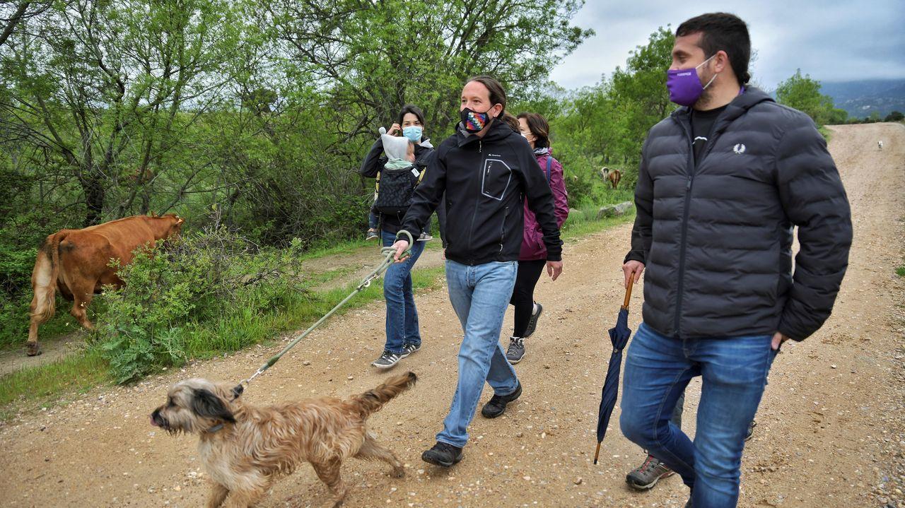 Pablo Iglesias, este lunes, paseando con su perro y sus colaboradores