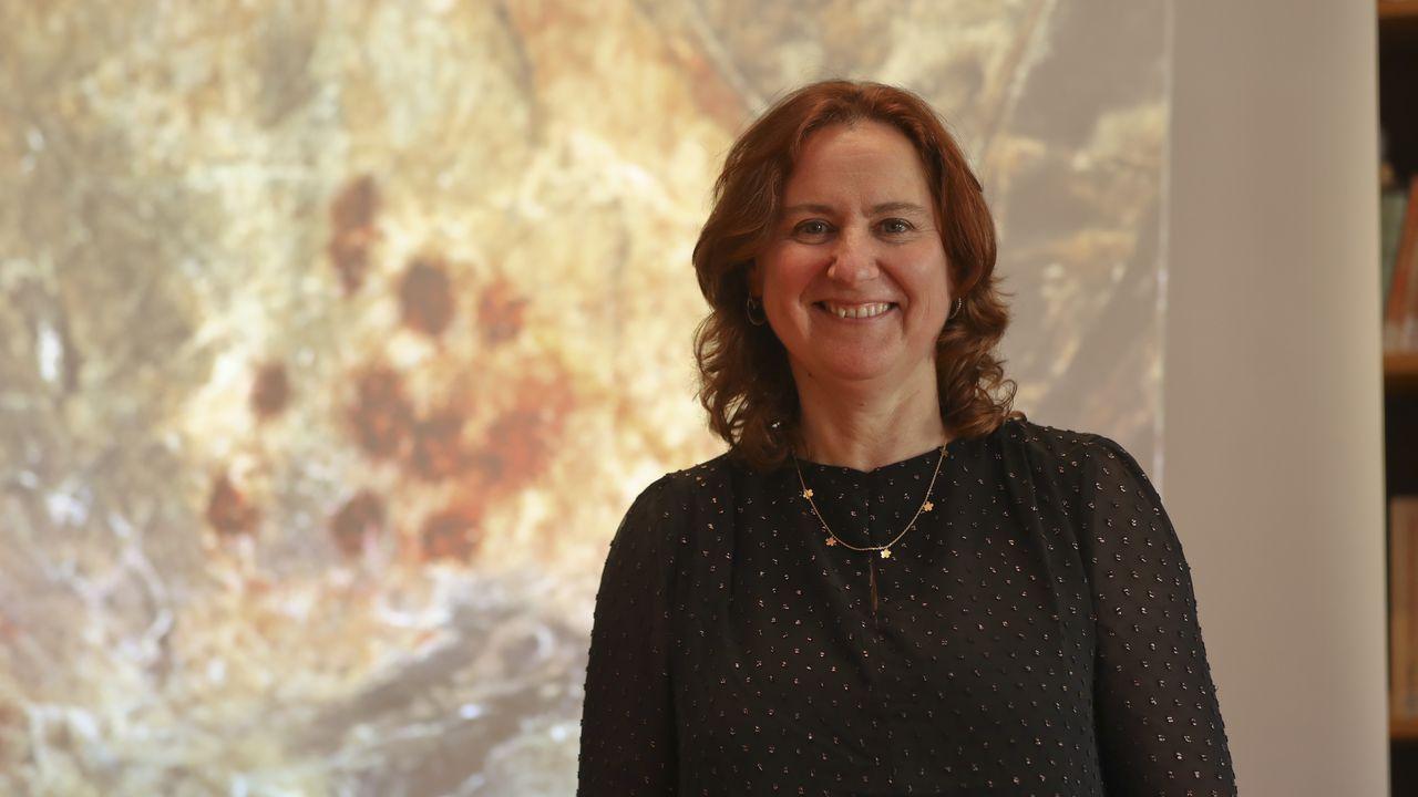 Beatriz Comendador, investigadora da Universidade de Vigo, este martes nunha xornada do Consello da Cultura Galega