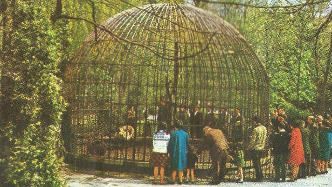 La jaula de Petra y Perico en el campo de San Francisco de Oviedo