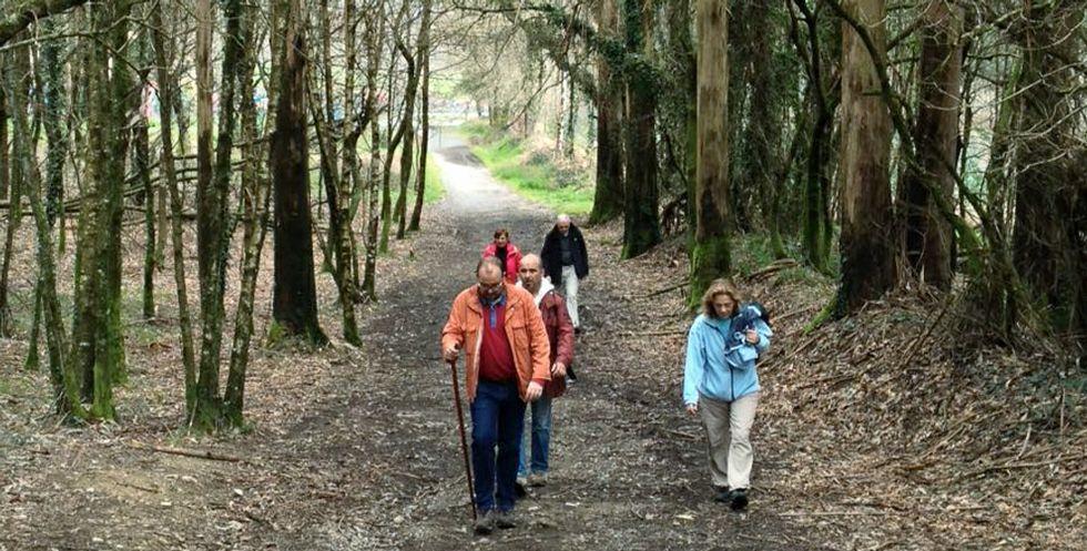 El Camino Francés permite peregrinar por caminos, sin el problema del asfalto.