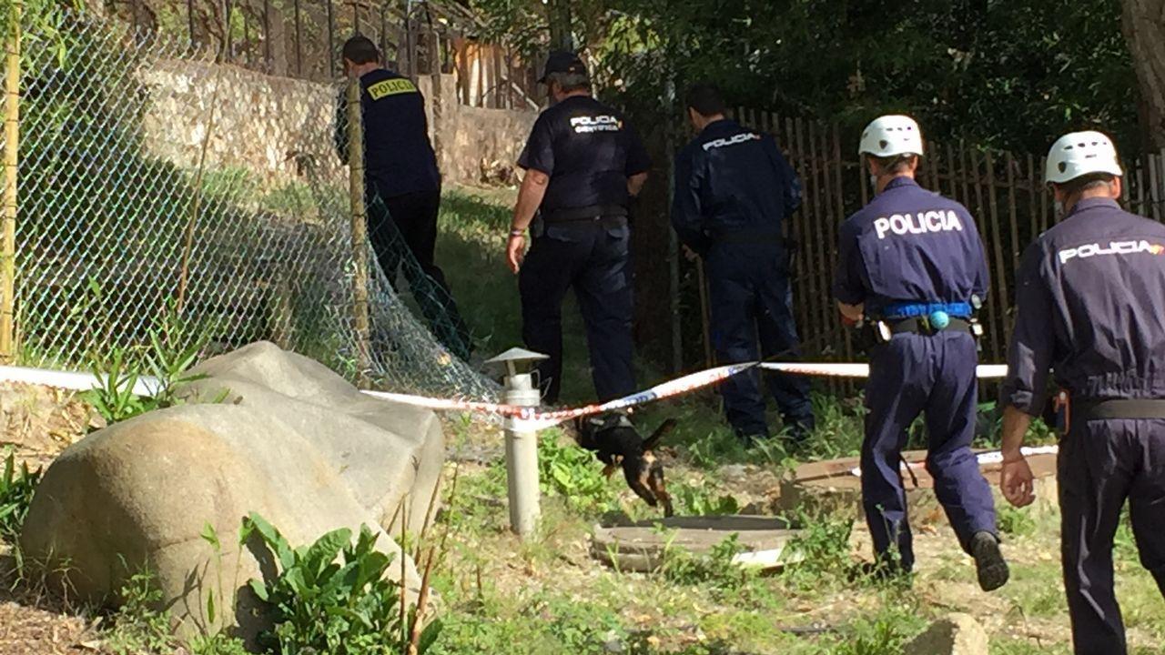 Inspección del incendio de A Chavasqueira con unidad canina de la Policia Nacional