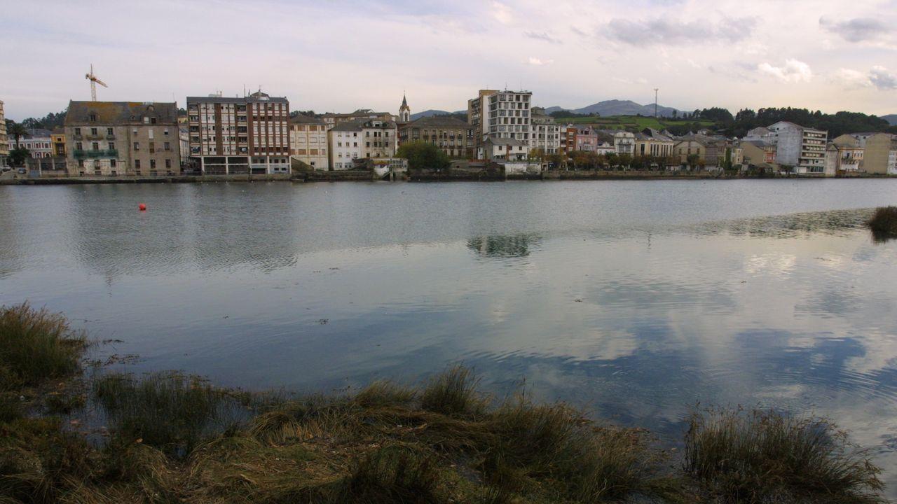 POLILLA GUATEMALTECA. La plaga, muy temida en las plantaciones de patatas, fue detectada en el 2015. Está localizada en varios ayuntamientos de Ferrol y de A Mariña.