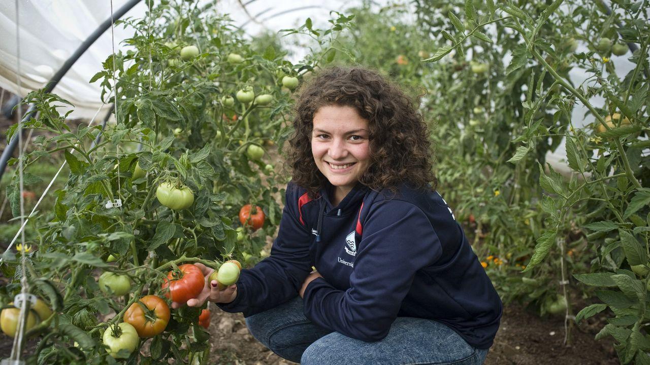 Cynthia Arias, productora ecológica de O Aparral, en As Pontes, en su invernadero, en una imagen de archivo