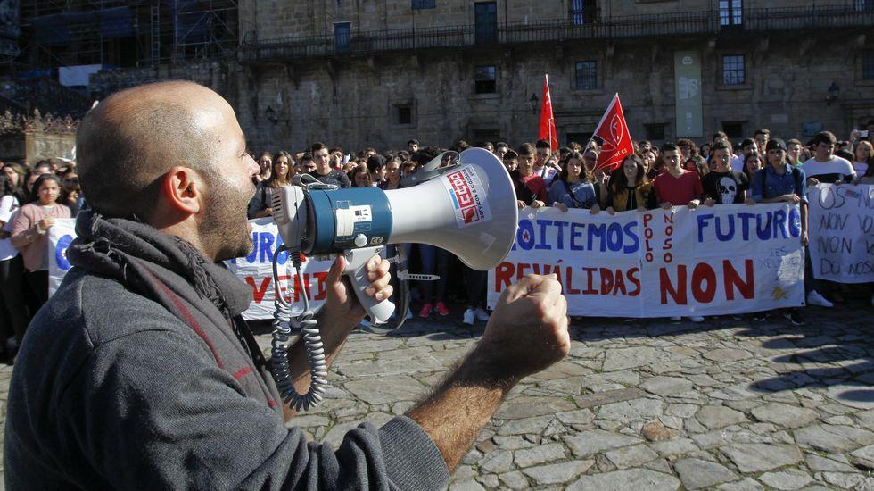 Luis Villares, en la manifestación de Santiago