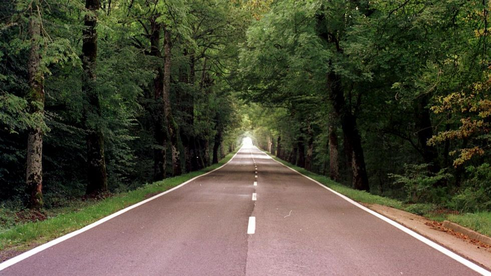 Tramo del Camino de Santiago en Roncesvalles