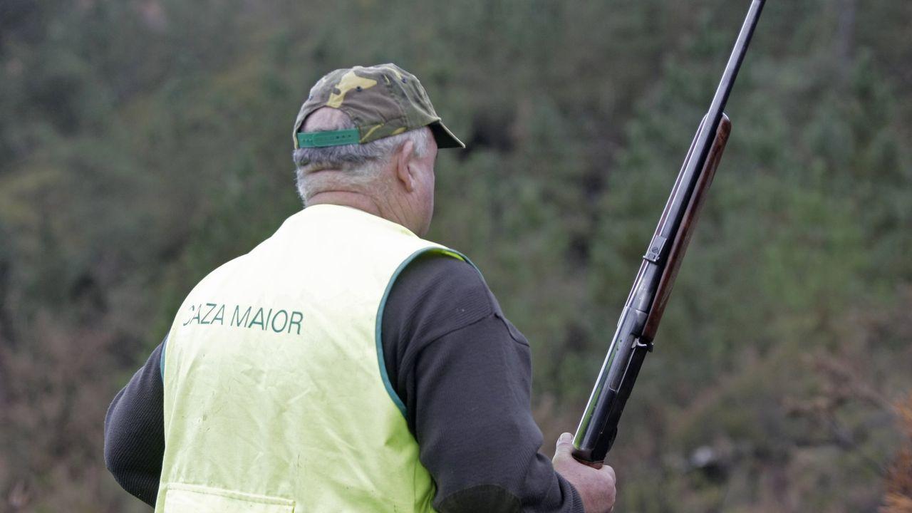 Imagen de una batida de caza