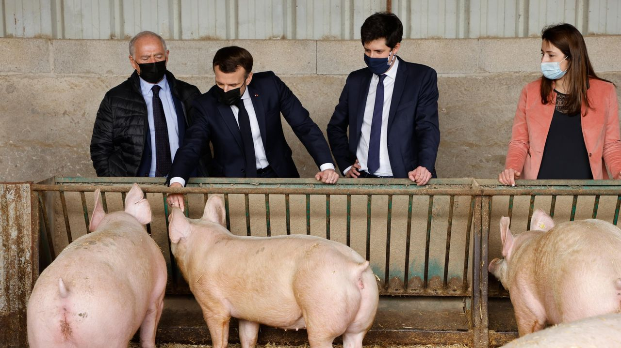 El ministro francés, segundo por la derecha, junto a Macron en una granja de cerdos