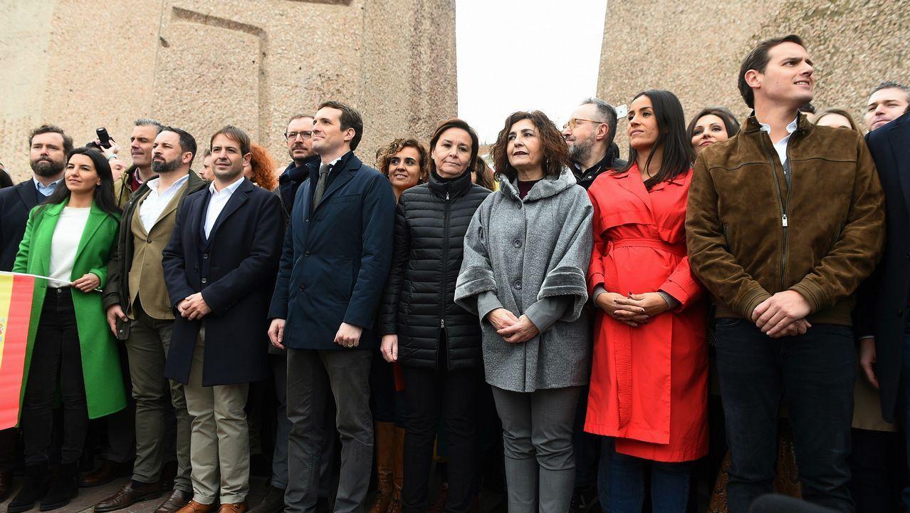 Asturias, Oviedo, Gijón.El presidente de Vox, Santiago Abascal; el presidente del PP, Pablo Casado; y el presidente de Ciudadanos, Albert Rivera, se fotografían juntos en la concentración en la Plaza de Colón