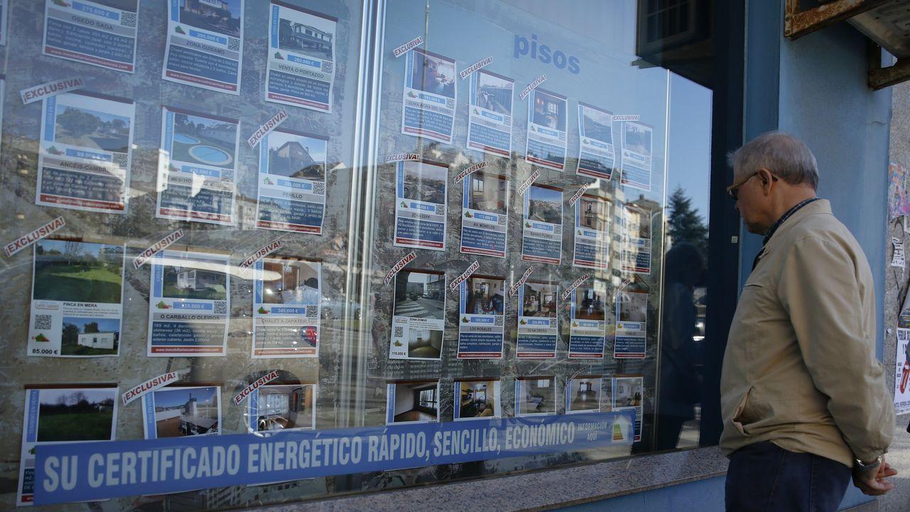 jardin.Un cliente observa ofertas de pisos en una inmobiliaria