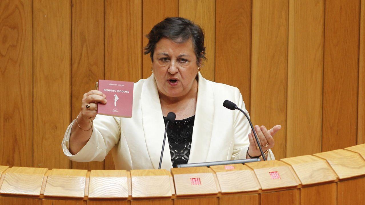 ¡Mira aquí as imaxes da homenaxe a Castelao en Rianxo!.Pilar García Negro.
