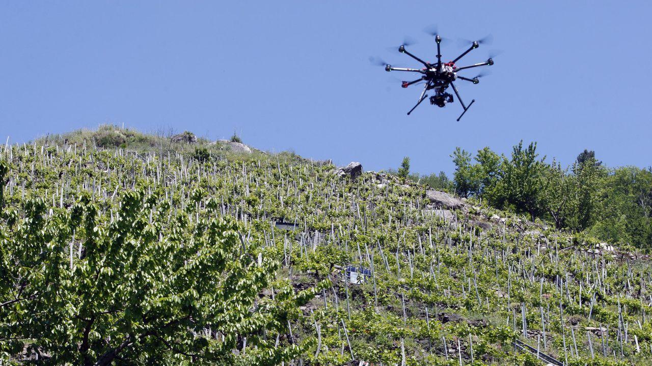 En la búsqueda del desaparecido se emplearon drones