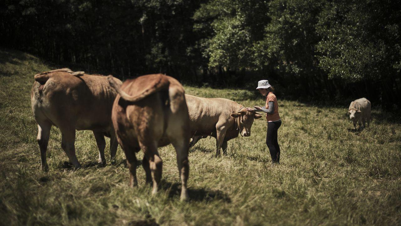 María Páez puede localizar a sus vacas gracias a los collares con GPS.Pablo Domínguez, Gema Acea, Christian La Banca y Daniel Velasco, integrantes del equipo UVigo Aerotech
