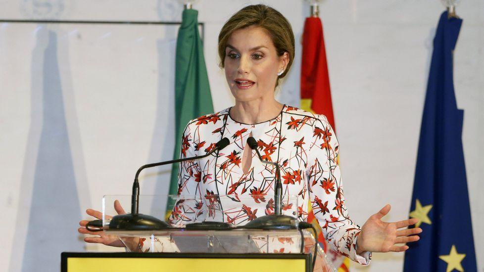 La reina lució este vestido en una jornada sobre tabaquismo en Oporto.