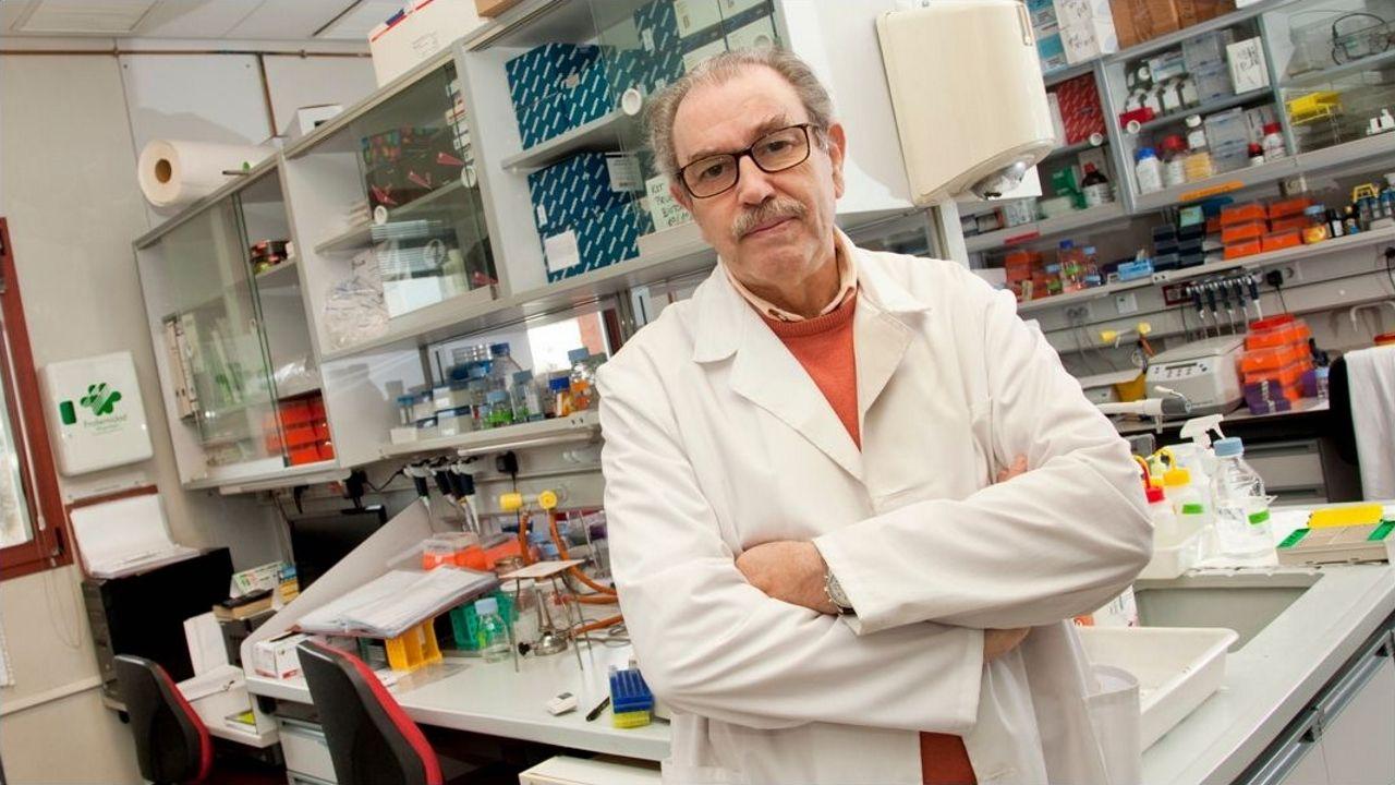La farmacéutica Sanofi con sede en Francia.Fernando Simón se quita su mascarilla para iniciar su intervención