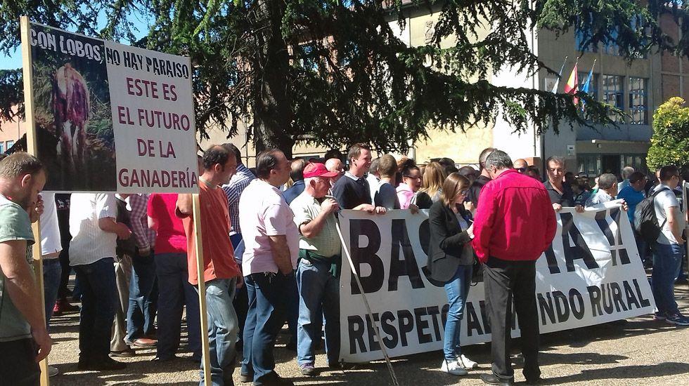 Protesta en Oviedo de los ganaderos, que se defienden de las críticas por el lobo y los incendios.Protesta en Oviedo de los ganaderos, que se defienden de las críticas por el lobo y los incendios