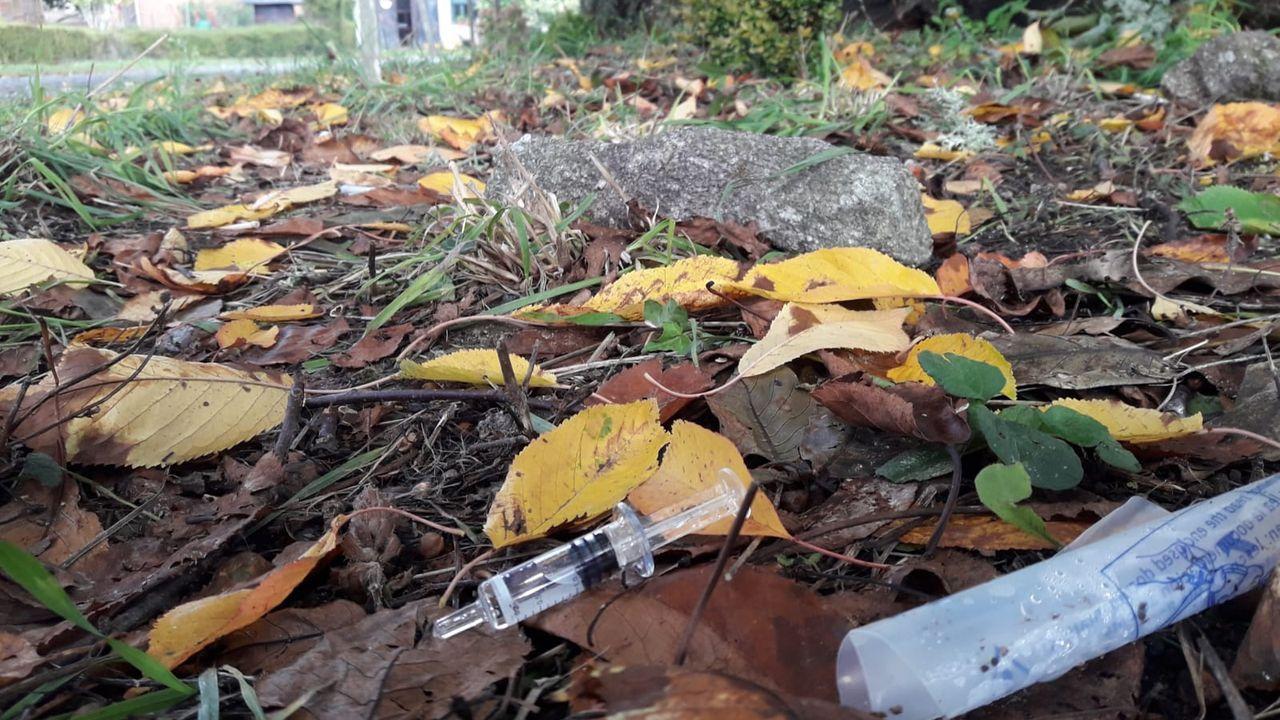 Lugar donde fue atendido por los servicios sanitarios el hombre atacado por las avispas