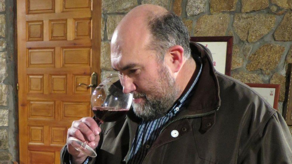 Luis Buitrón. Desde Ribeira Sacra. El fin de la vendimia en Galicia y Asturias ha coincidido este año con el inicio de las labores en la bodega que lleva en León.