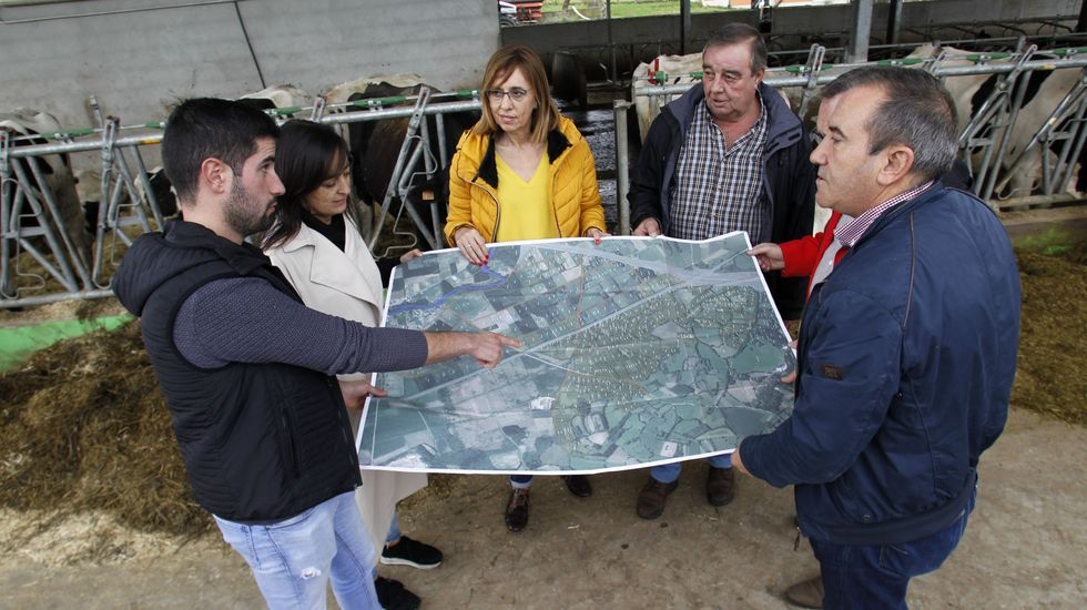 Las fotos de las principales protestas del 25-N en el sur de Lugo.Preparación de una pancetada en un magosto celebrado en el pabellón deportivo de Pantón, en una imagen de archivo