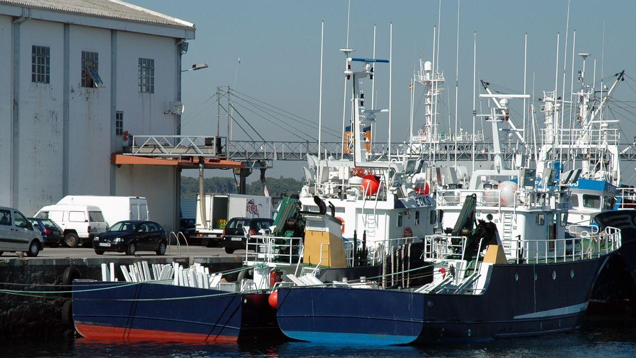 Imagen de archivo de varios cerqueros en el puerto de Ribeira