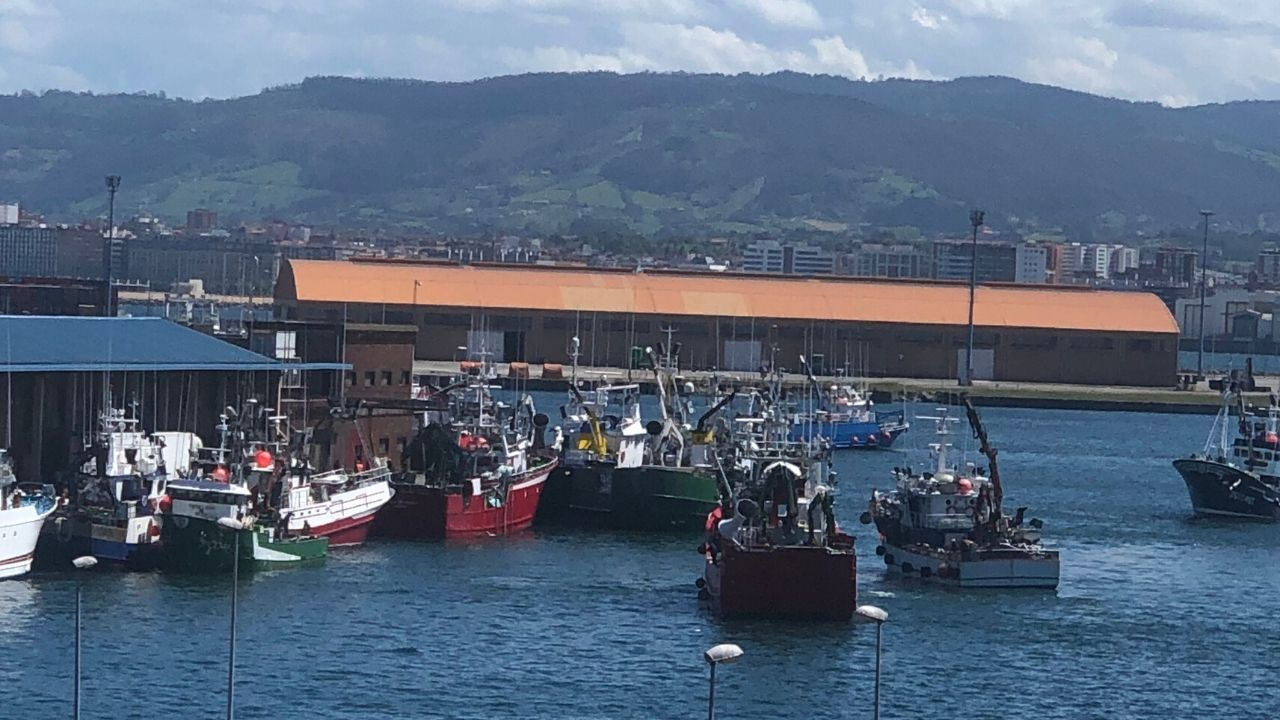 Pesqueros en el puerto de Gijón