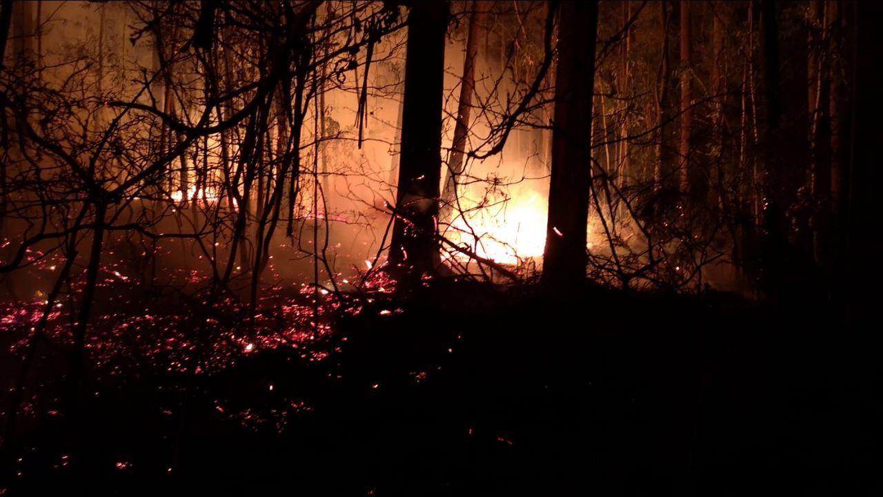 Fuego forestal en Vilamaior do Val.Incendio forestal en Noceda, Allande