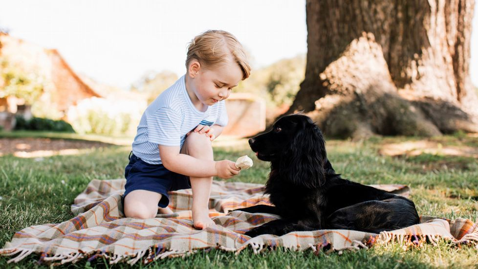 George cumple tres años